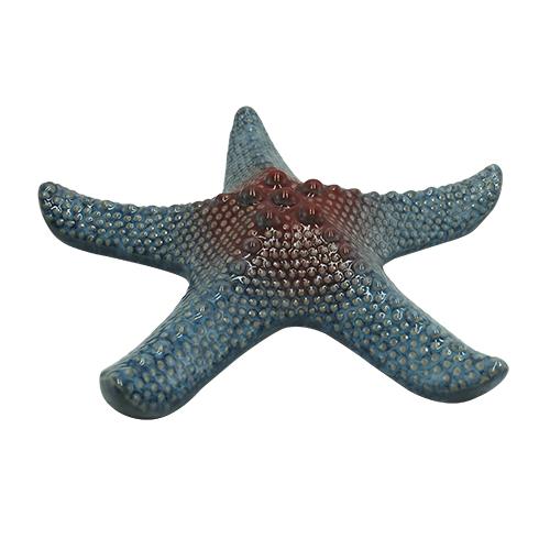 estrela mar sea 21x22cm  lhermitage